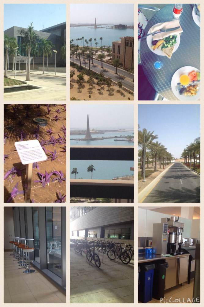 A Day To Remember - KAUST (1/3)