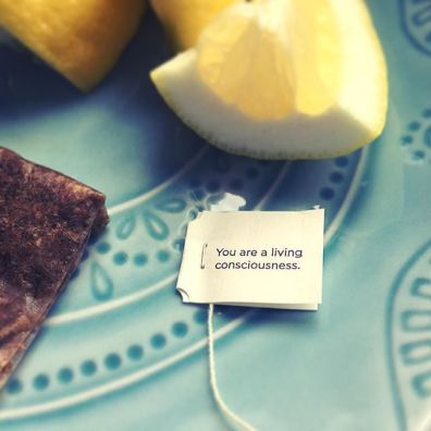 teabags2.7non18.wordpress