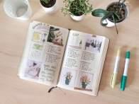 journal11-7non18-wordpress